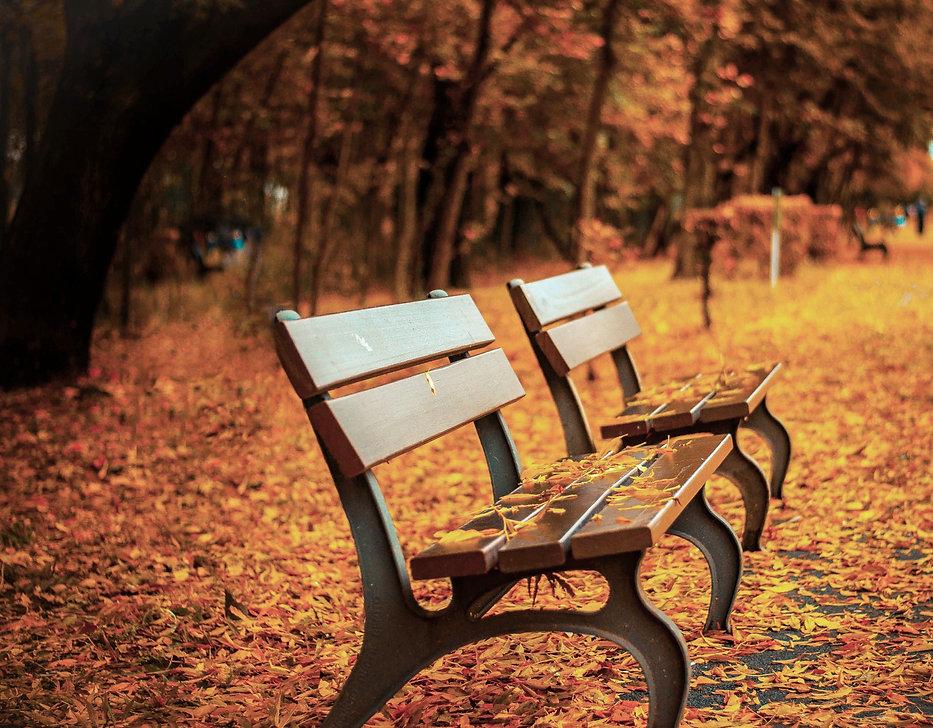 Neighborhood benches