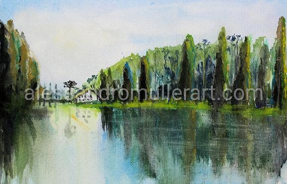 Lago Negro REF 02