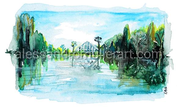 Lago Negro REF 04