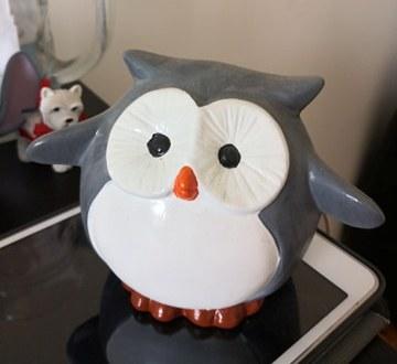 Owl Money Box