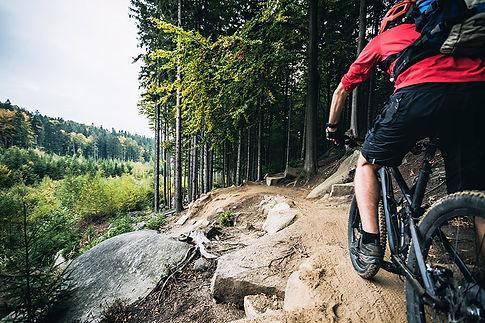 afan mountain biking.jpg