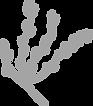 eden logo icon.png