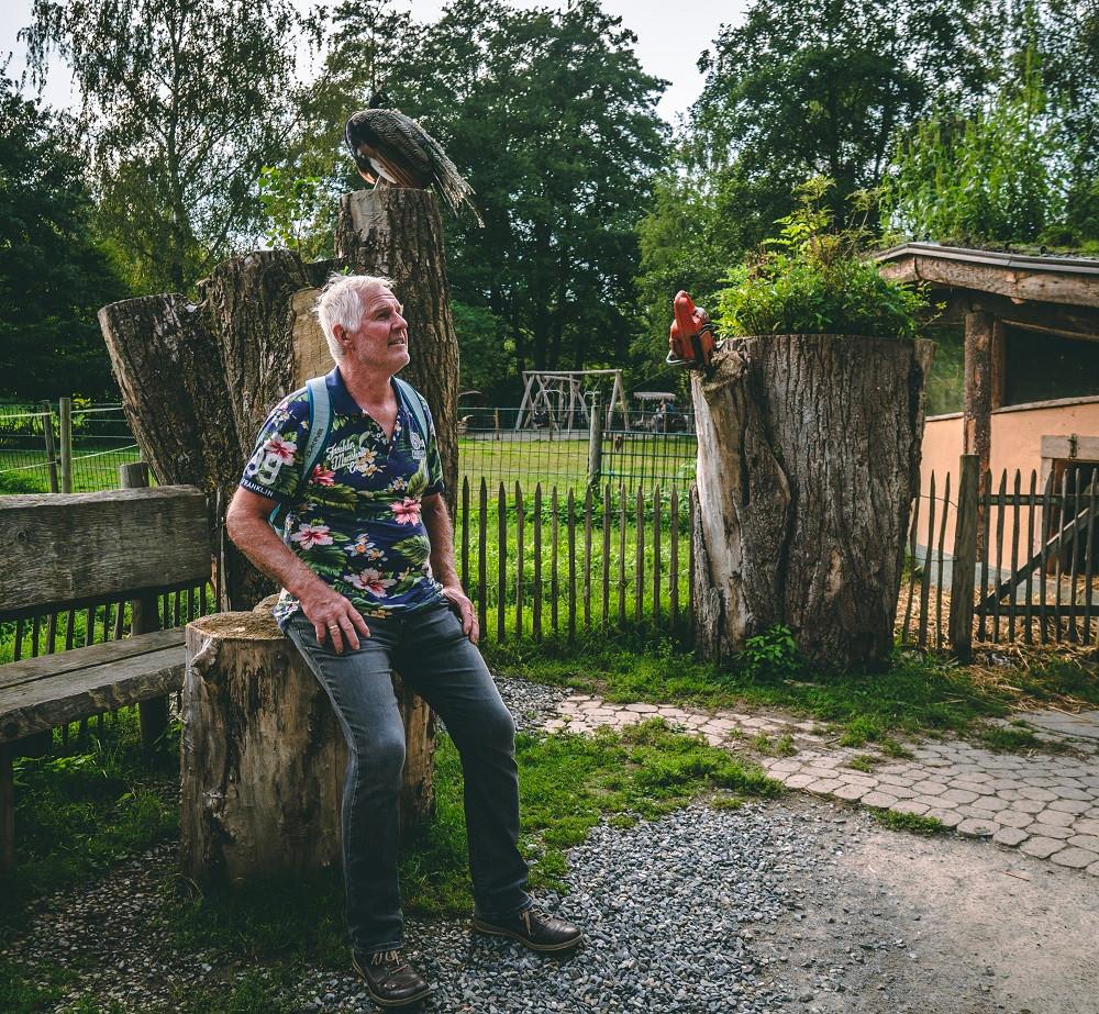Klaus von Klaushausen - Ferienoase am Bodensee im Haustierhof Reutemühle Pfauen unter sich