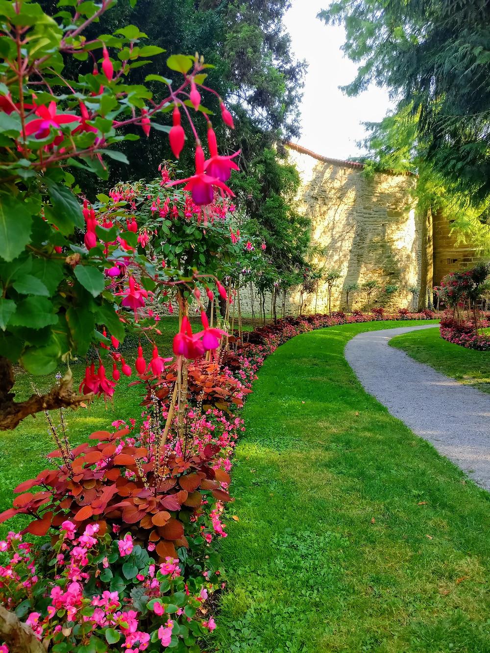 Der Stadtgarten von Überlingen bietet wie die Blumeninsel Mainau ein mediterranes Klima