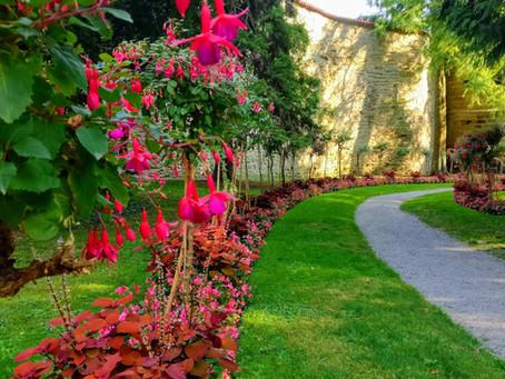 Spaziergang durch den Überlinger Stadtgarten