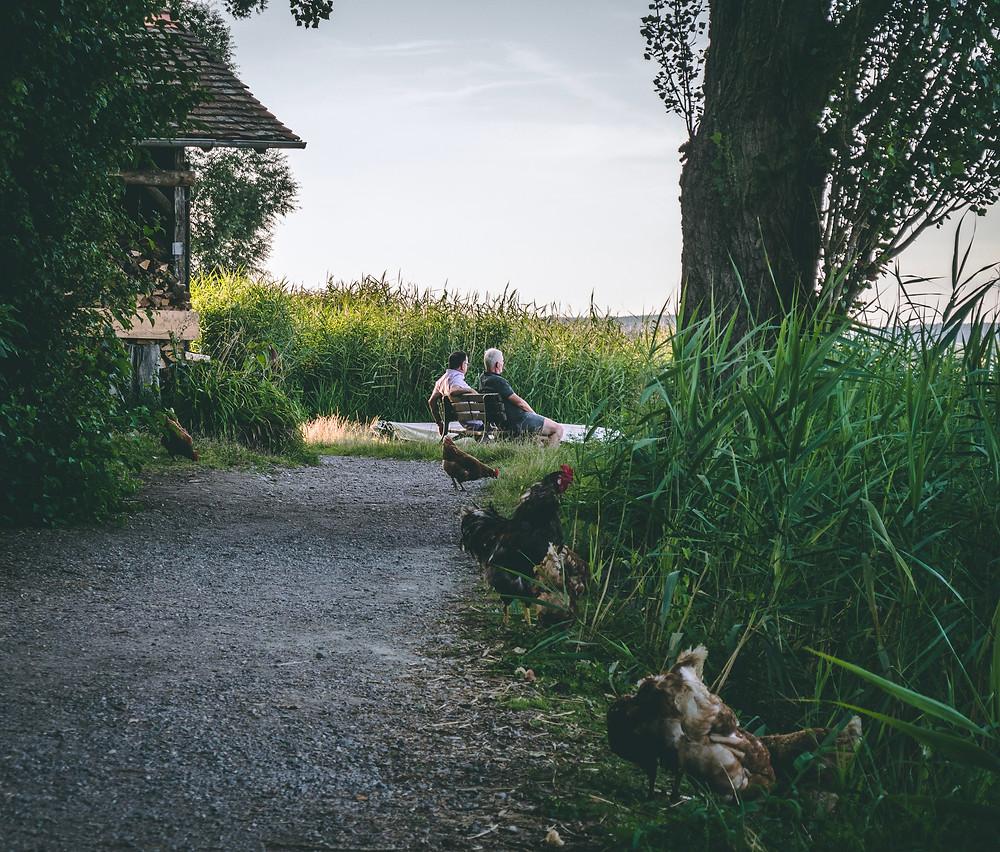 Idylle pur und nur wenige Meter vom Fischerfest entfernt.