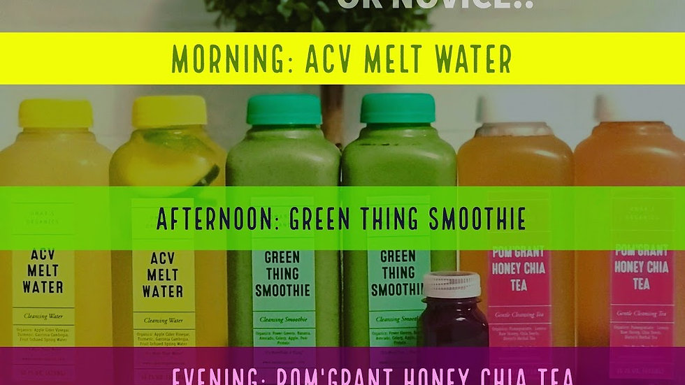 1-DAY CLEANSE + DETOX