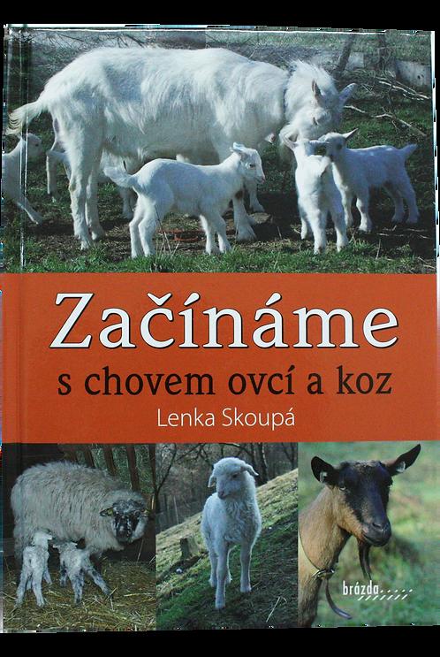 Začínáme s chovem ovcí a koz