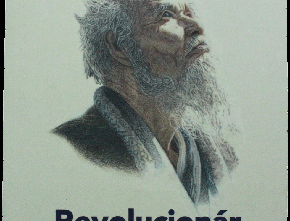 Revolucionár jednej slamky