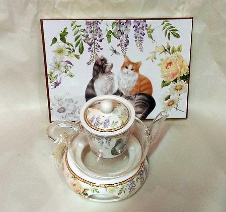 Teekanne Porzellan mit Glas Katzen inkl. Geschenkbox
