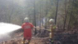 Waldbrandgefahr wie hier beim Waldbrandeinsatz 2014 in der Strubklamm