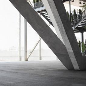 Lauraceae_Edificio Caja Mágica, Madrid