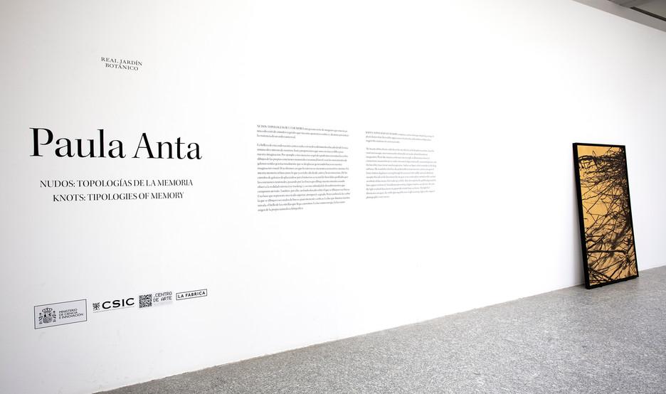 "Real Jardín Botánico. ""Nudos: Topologías de la Memoria"", serie Nudos. Madrid 2021"