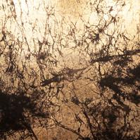 Neuronal Forest 04
