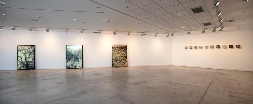 """Centro de arte de Alcobendas. """"Nudos: Topologías de la Memoria"""". Madrid, 2019"""