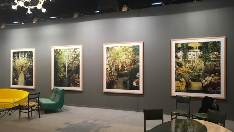 ARCO Feria Internacional de Arte Contemporáneo. Sala VIP, serie Paraísos Artificiales. Madrid, 2017