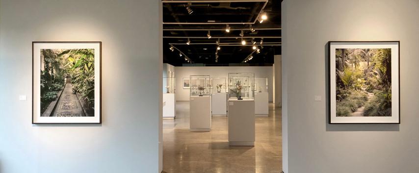 """Museo del Traje. """"Herbarios Imaginados"""", serie Palmehuset. Madrid, 2020"""