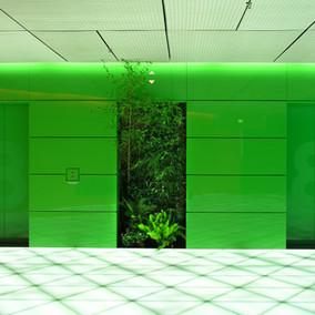 Tillandsia_Edificio Trianon, Frankfurt