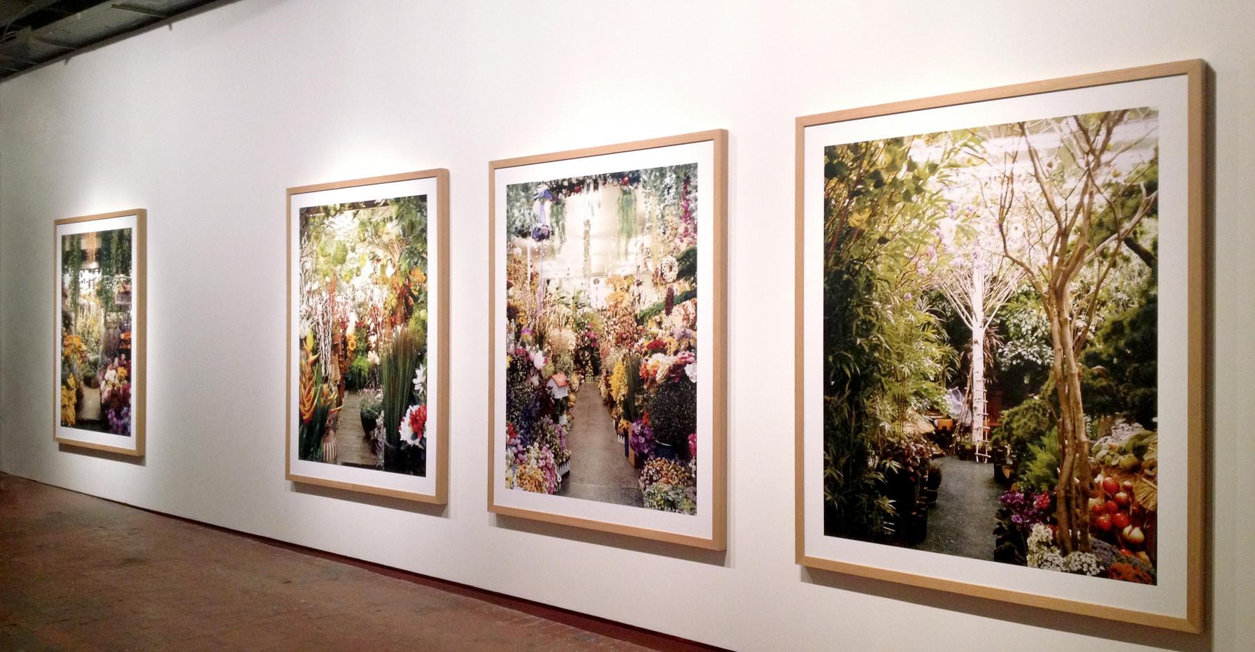 """Tabacalera centro cultural. """"Contexto Crítico, Fotografía española siglo XXI"""", series Palmehuset y Paraísos Artificiales. Madrid, 2016"""