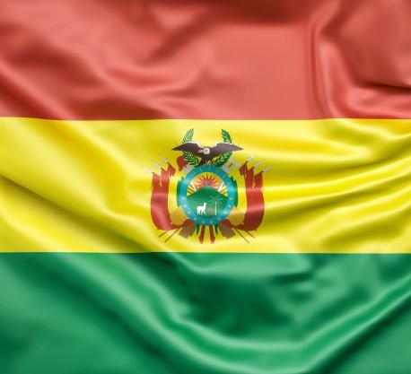 Bolivia y la contrarrevolución ¿CÓMO DERROCARON A EVO?