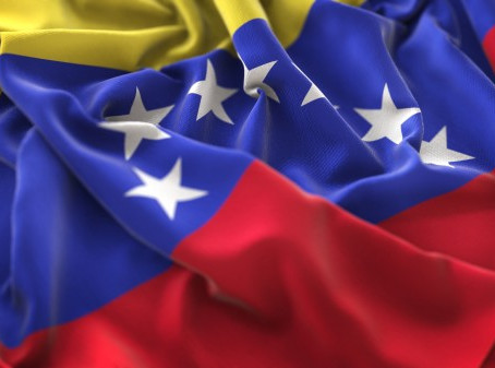 Venezuela: la naturaleza de su régimen y el ejercicio del poder