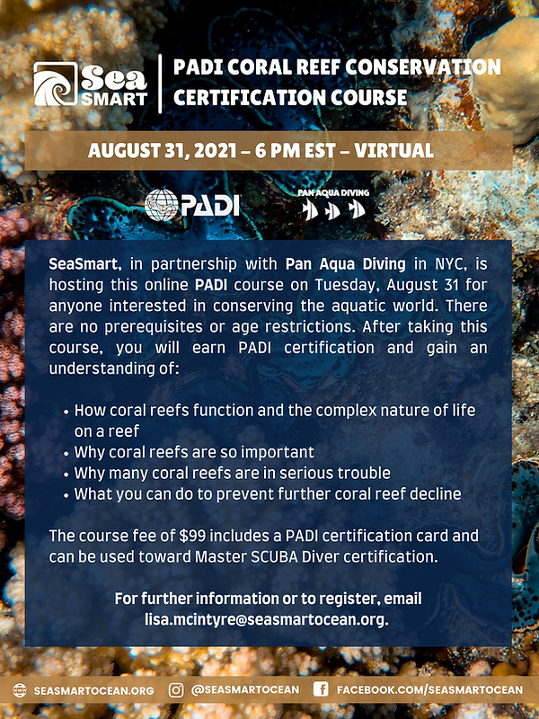 Earn PADI's Coral Reef Conservation Certification With Us (1).png