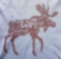 Custom T-shirt Printing   UiA Graphics