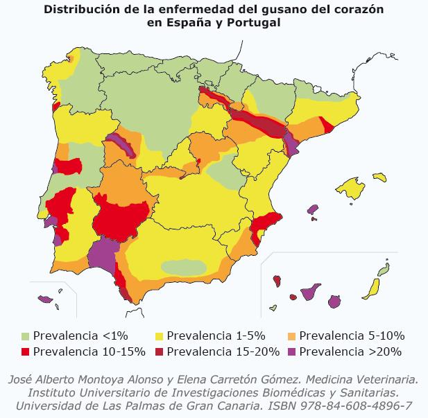 Foto: mapa distribucion enfermedad gusano del corazon