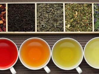 Tipos y propiedades del té