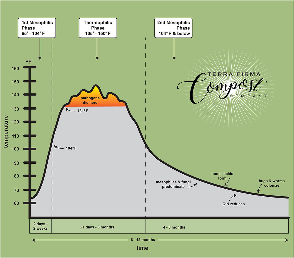 The Three Phases of Hot Compost