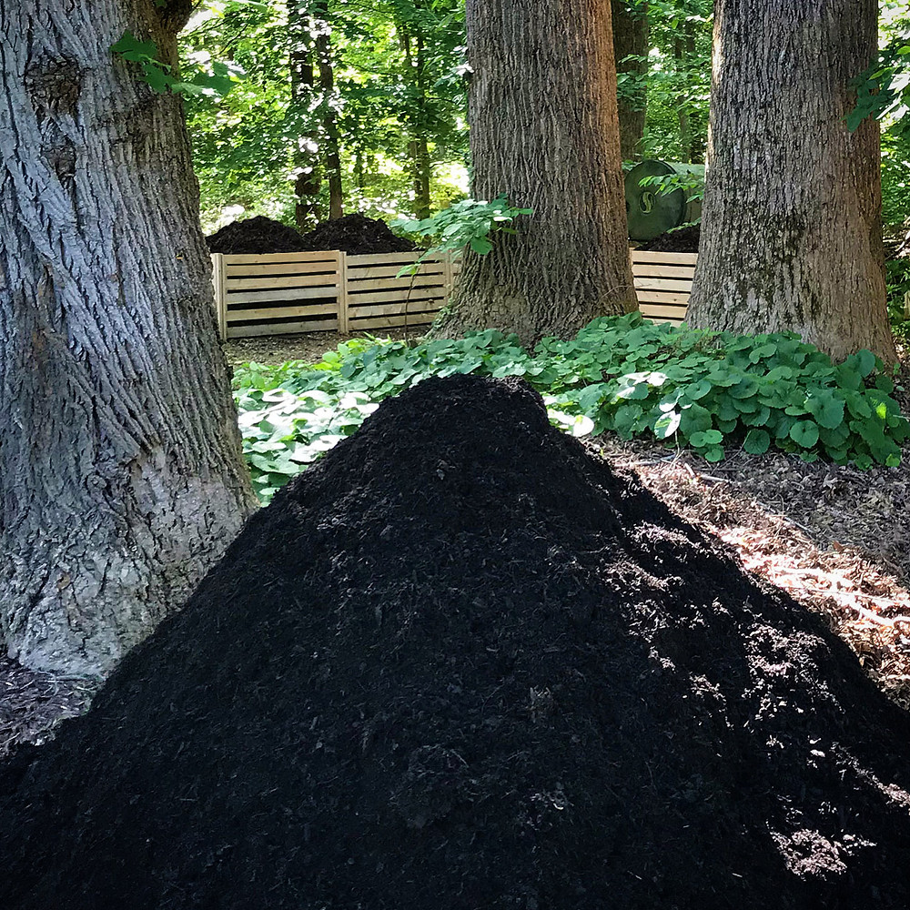 Compost pile next to compost bins