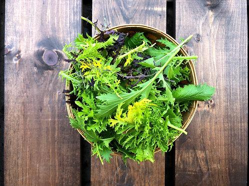 Mixed Greens; Organic