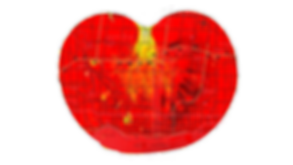 Tomato_Map.png
