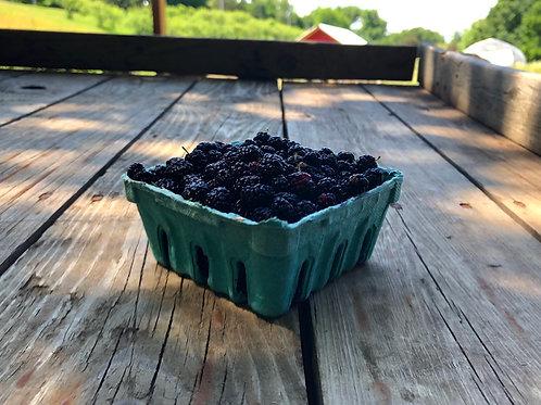 Mulberries; Wild & Organic
