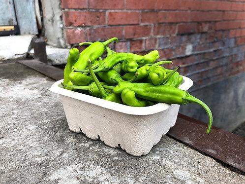 Shishito Peppers; Organic & Biodynamic