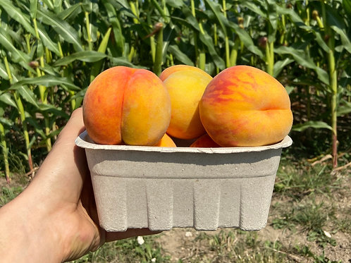 Baby Gold Peaches