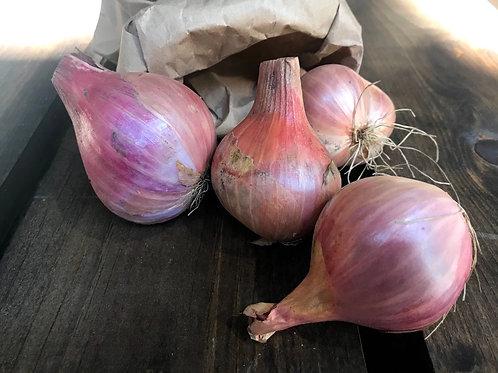 Shallots; Organic