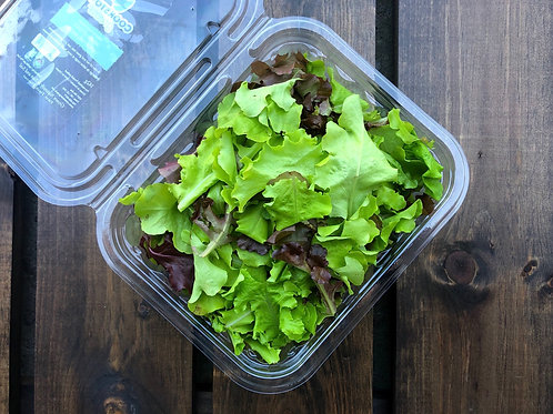 Mixed Lettuce; Organic