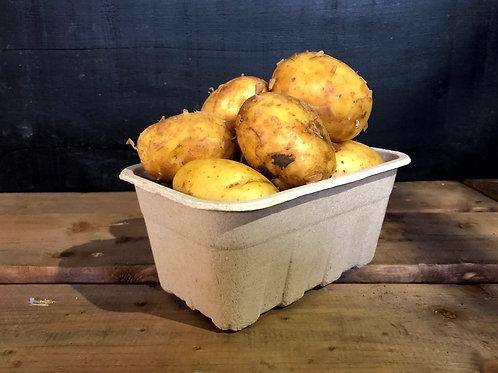 Blonde Potatoes; Organic