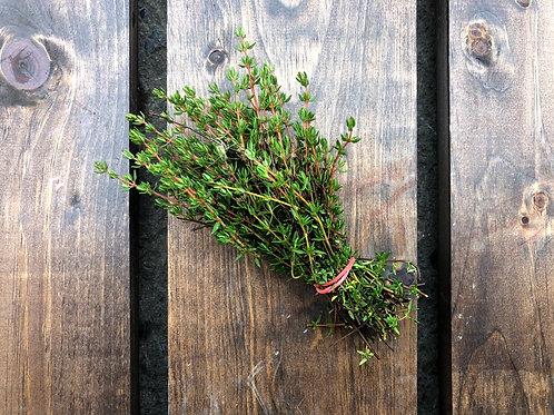 Thyme; Organic