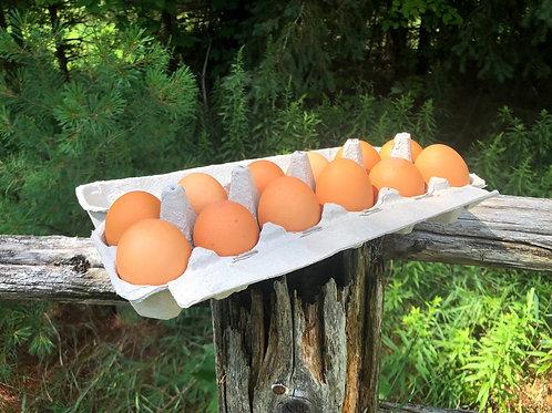 Eggs; Free-Run & Organic
