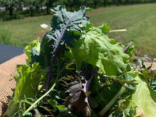 Stir Fry Mixed Greens; Biodynamic
