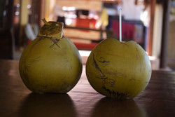 Coconuts - keeping us in the zone