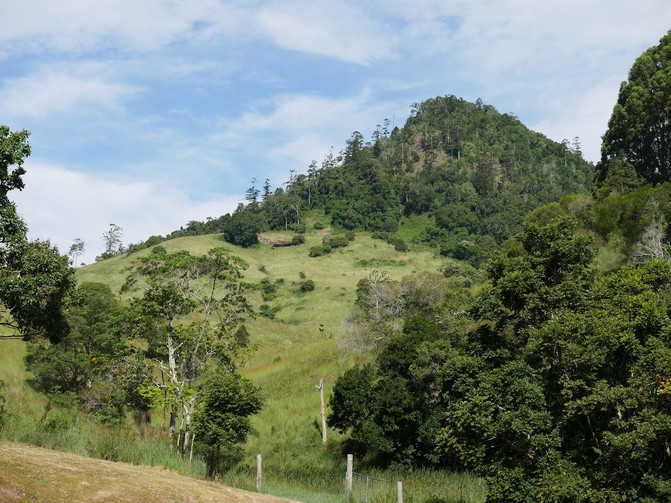 Pinbareen Mountain