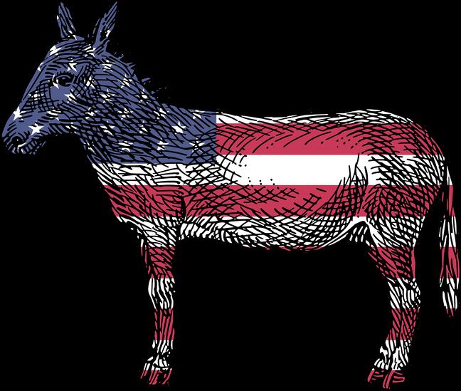 Democratic Debate Who Won