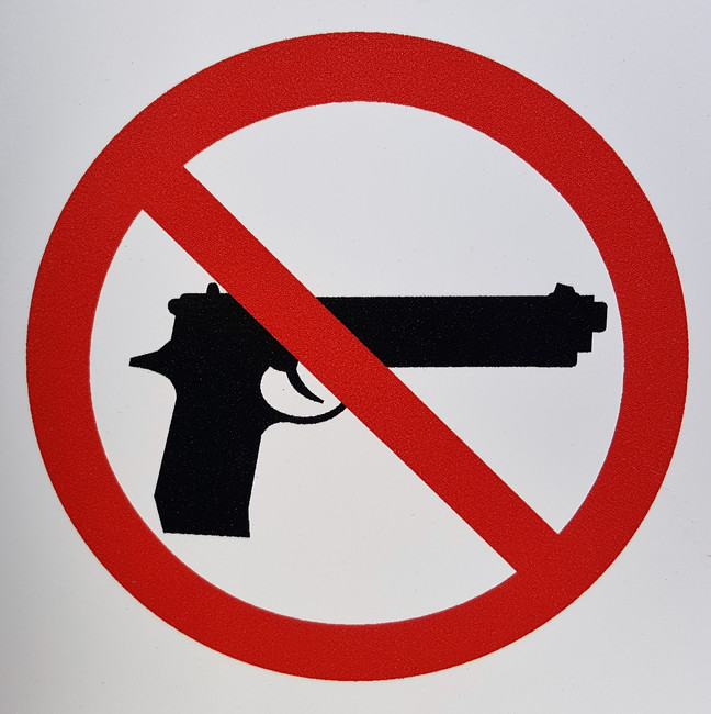 What's Bothersome About Gun Control