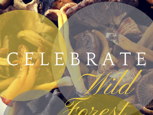 Celebrate wild forest mushrooms