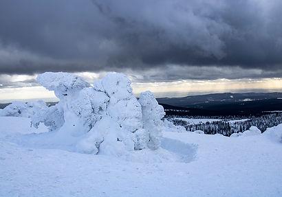 Blick vom Brocken-Plateau