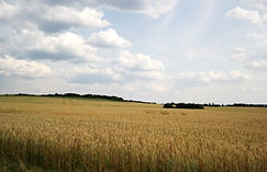 Landschaft Tschechiens