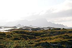 Küstenlandschaft Andenes